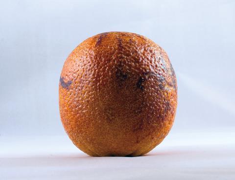 Blood orange on white